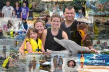 Family Trip to Seaworld